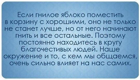 https://pp.vk.me/c7001/v7001380/15f6e/B5RowVChmn8.jpg