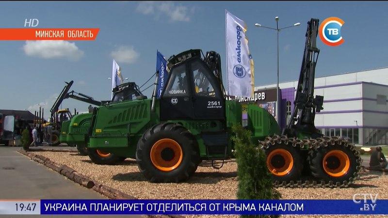 «Здесь очень высокий уровень». Под Минском проходит выставка, посвященная лесной отрасли