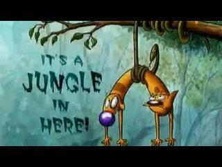 Котопес 02x13 Собачья сила, Здесь дикие джунгли