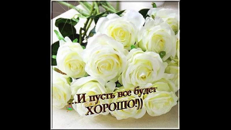 Doc2000006377_478888661.mp4