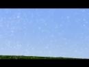Энтопический феномен синего поля