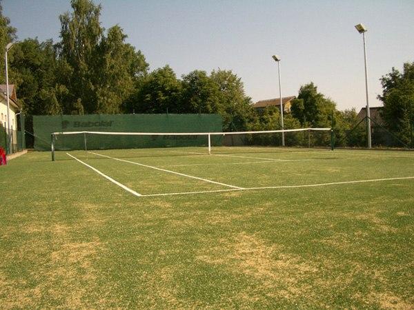 Теннисный корт на даче своими руками