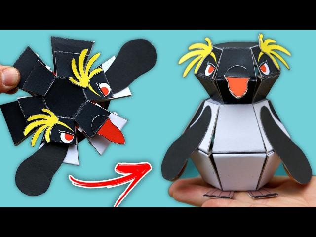 Descubra o segredo do pinguim explosivo!