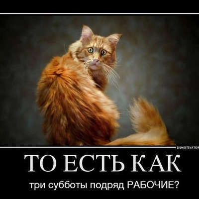Кирилл Кадетов, 6 июля 1992, Киев, id228648633
