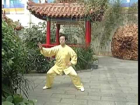 Чэнь Чжанлей ЛАО ЦЗЯ 2 ПАО ЧУЙ 1 часть Chen Zhenglei Lao Jia Pajchui 01 part