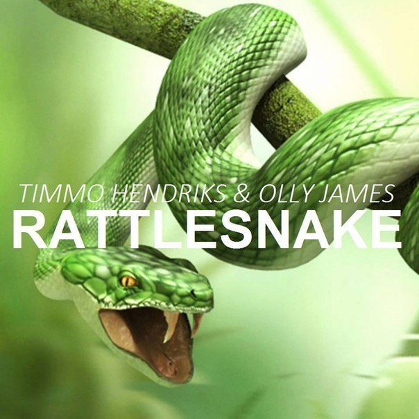 Timmo Hendriks & Olly James - Rattlesnake (Original Mix)
