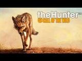 ОХОТА НА КОЙОТОВ - TheHunter Call of the Wild.