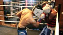 Техника Ближнего Боя для Боксеров ЧАСТЬ 3 Атака и Защита на Ближней Дистанции