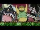 ТОП 10 Сильнейших ЖИВОТНЫХ One Piece || Вся сила Чоппера || СИЛЬНЕЙШИЕ ЖИВОТНЫЕ МИРА || One Piece