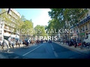 Horses Walking in Paris 2018 juillet