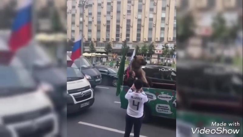 Мишка Тима в Москве ЧМ-2018