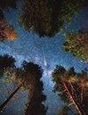 Если бы люди сидели снаружи и смотрели на звезды каждую ночь, бьюсь об заклад…