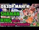 Обзор манги Shaman King Быть шаманом-королём