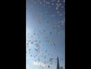Федук-хлопья летят на верх.Очень красиво,шарики