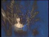 Светлана Медяник - Бегущая по волнам