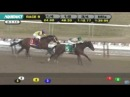 2014 Withers Stakes at Aqueduct- Samraat Wins 2014 Withers Stakes