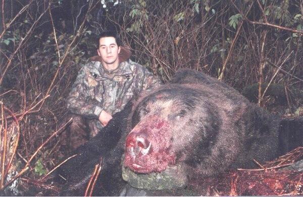 В США убит гигантский медведь-людоед