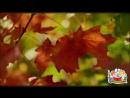Явления природы - Познавательное видео для детей. Новинка!.mp4