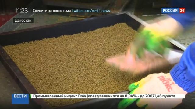 Новости на Россия 24 • Дагестан избавят от старых покрышек
