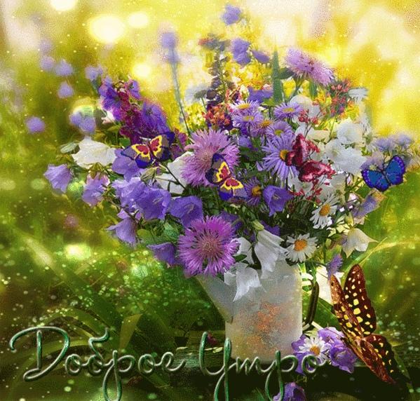 Прекрасный воскресный день!)