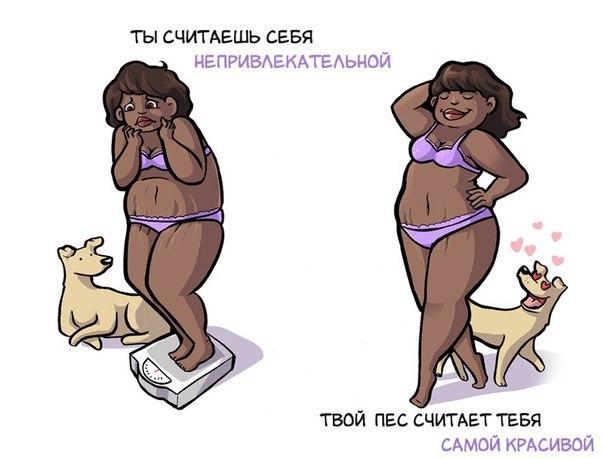 Разница между тем, как вы себя видите, и как вас воспринимает собака
