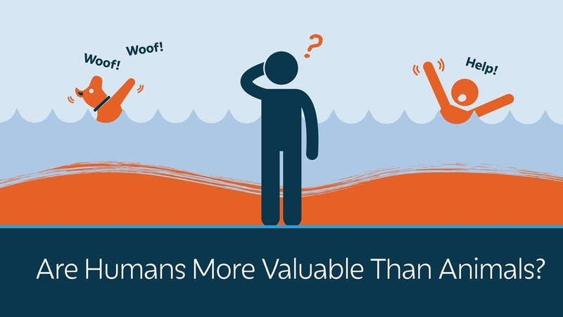 Are Humans More Valuable Than Animals