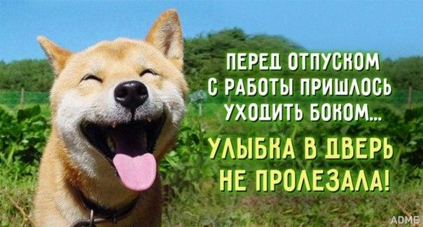 15 открыток, заряженных оптимизмом: ↪