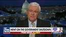 Gingrich on How Trump Can 'Beat' Pelosi Left Wing Democrats on Shutdown Border Security Funding