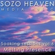 Sozo Heaven - Song of the West