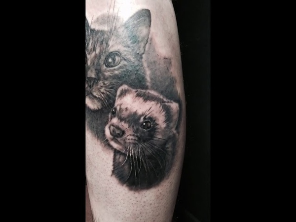 Maria Panásenko cat and ferret realistic tattoo closeup