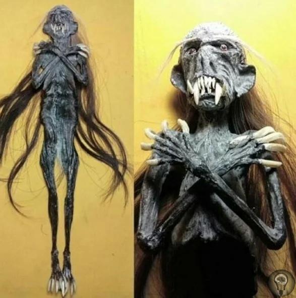 Зловещие существа из джунглей Дженгло- существо, найденное в Индонезии. Он напоминает крошечную гуманоидную куклу и кажется существом современности, так как первые сообщения о существовании