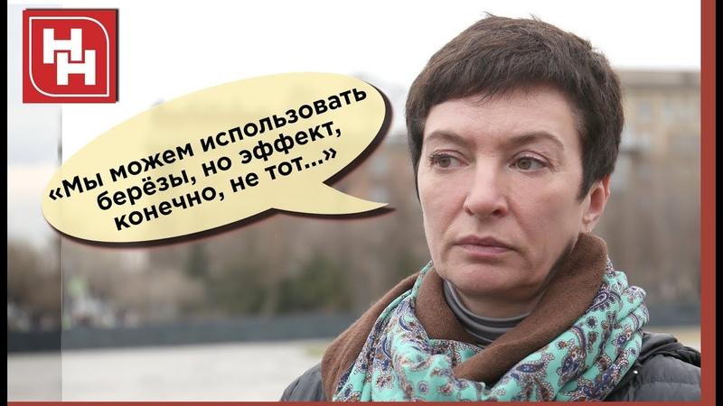 ЯБЛОНИ РАЗДОРА: саженцы из немецкого питомника не прижились на Михайловской набережной