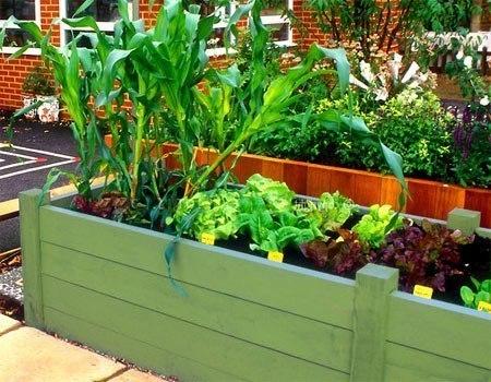 Красивый огород своими руками  как сделать красивые грядки!