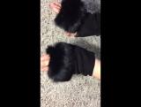 Перчатки женские. Натуральная замша, мех кролик