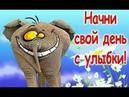 Позитив для друзей 🌼 Хорошего дня и отличного настроения 🌼 Юморнем 🌼
