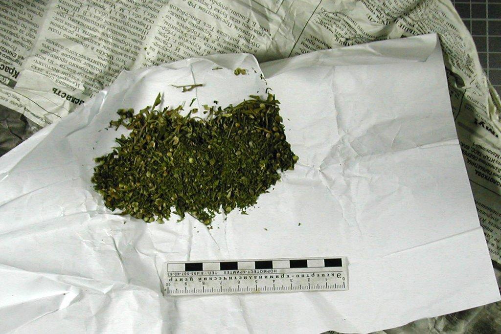 Недалеко от Таганрога полицейские изъяли у 22-летнего парня 200 граммов марихуаны