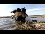 Подводная охота в апреле, карп 3.2 кг