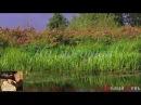 """Поёт Валерий Сёмин - """"Белый день"""".  НА ПОСОШОК - YouTube"""