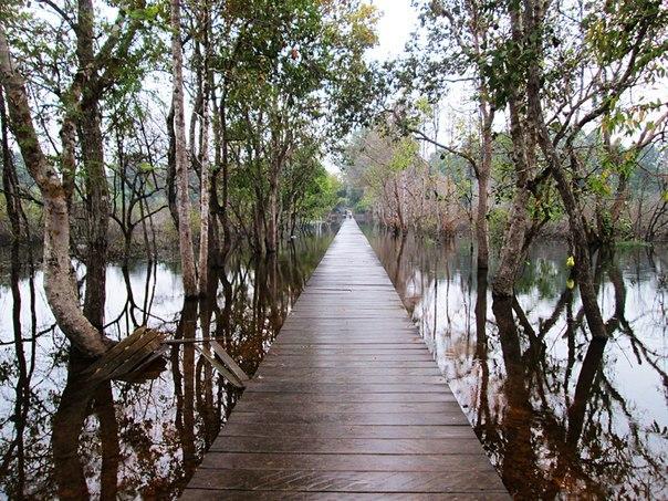 Наш загадочный Ангкор H1RfGCAlIBw