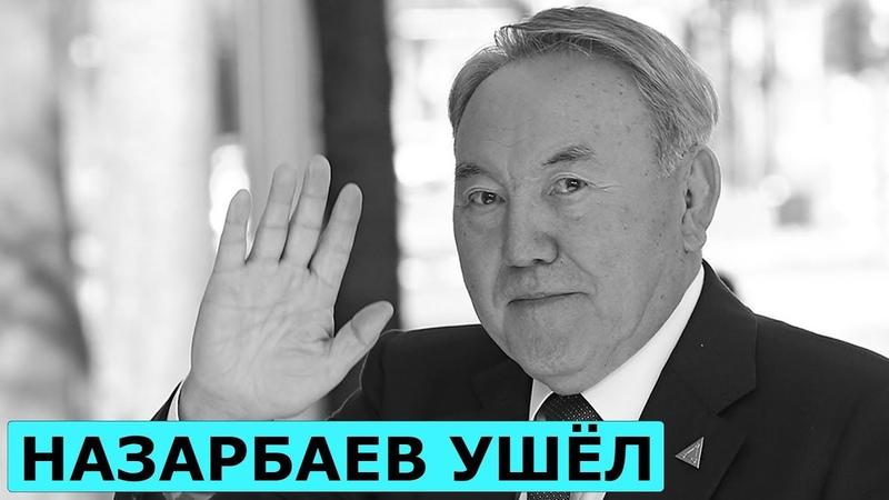 Ручная демократия. Дмитрий Потапенко