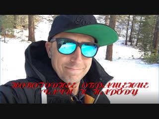 Чача Иванов поздравляет с Новым Годом!
