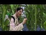 Помутнение A Scanner Darkly (2006) Режиссер Ричард Линклейтер