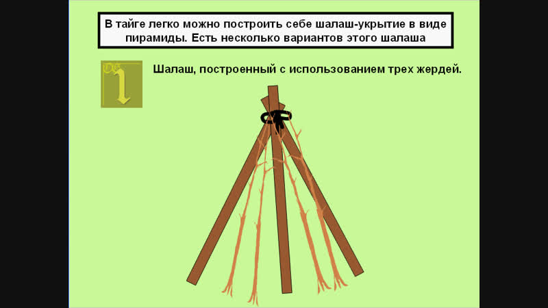 3 Использование имеющихся древесных материалов для построения шалаша