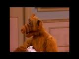 Alf Quote Season 2 Episode 3_Забастовка