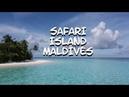 Safari Island Resort Maldives | private boat trip | manta rays dolphins | GoPro Holiday