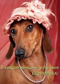 Елена Стригалева, 24 июня , Москва, id200711879