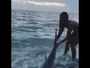 Тайны океанов Храбрая девушка не дала акуле эволюционировать