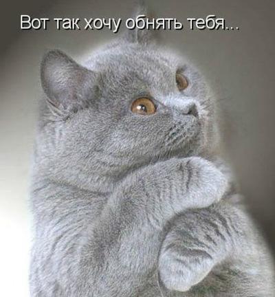 Елена Козлова, 27 декабря , Москва, id195161190