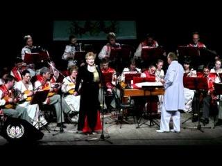 Мир через Культуру: Концерт Тюменского оркестра русских народных инструментов 19 января 2014 года