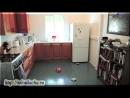 Полтергейст громит кухни. Реальные паранормальные явления. Домовой бес в доме. Что такое полтергейст